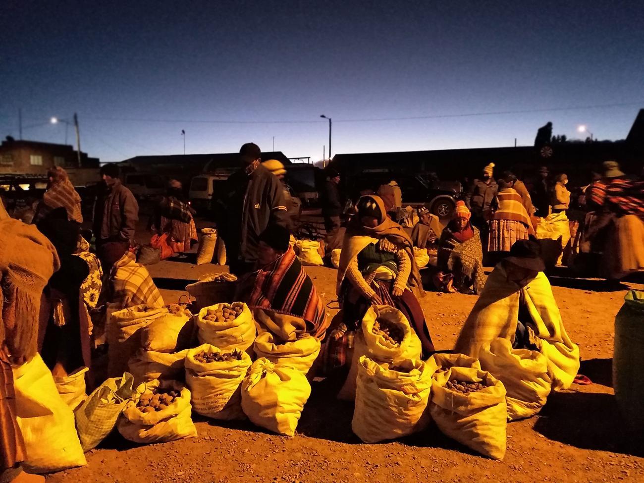 La odisea de las productoras del altiplano para  alimentar en pandemia y el abandono estatal