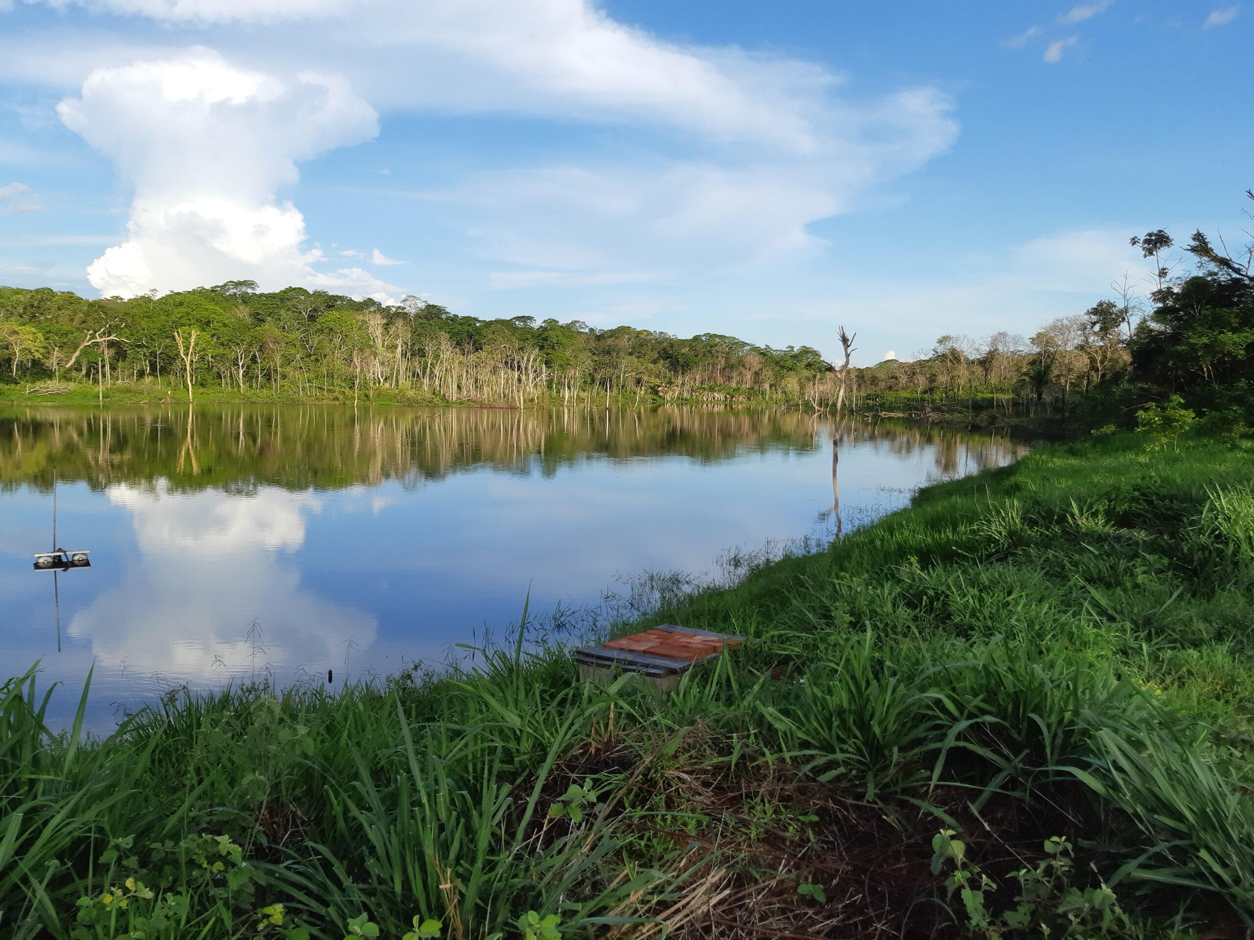 El bosque de 1.200 hectáreas que provee de agua a La Asunta